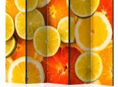 Paraván - Citrus fruits II [Room Dividers]
